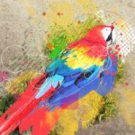 Abstract Parrot Manipulation